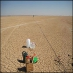 Geophysics and handaxes in Northern Jordan